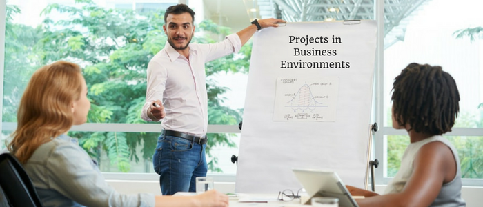 Projects in Business Environments