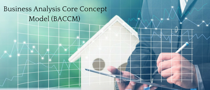 The Business Analysis Core Concept Model (BACCM)