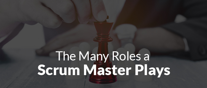 The Many Roles a Scrum Master Plays