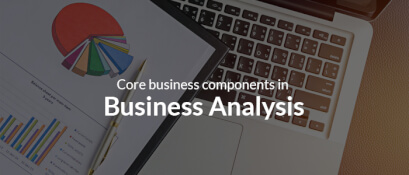 Core Business Components in Business Analysis