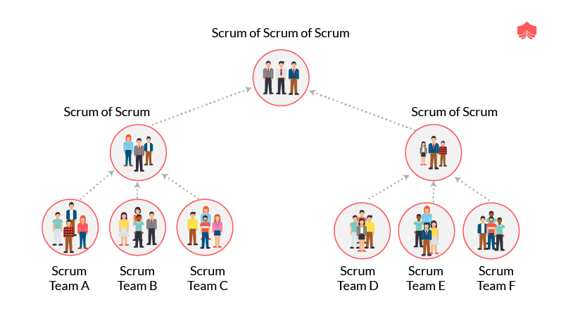 What is the scrum of scrums