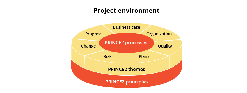 Essential Guide to Clearing PRINCE2 Examination