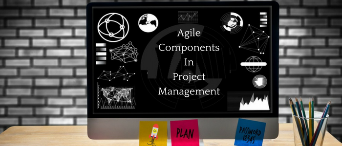 Agile Components Segregation In Project Management