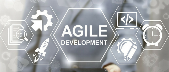 Essential Clients' Guide to Agile Development Methodology