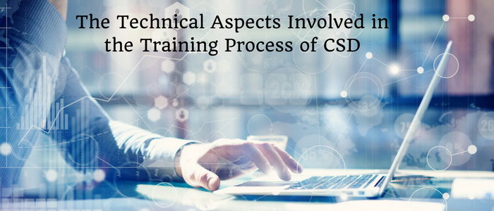 The Technical Aspects Involved in the Training Process of CSD