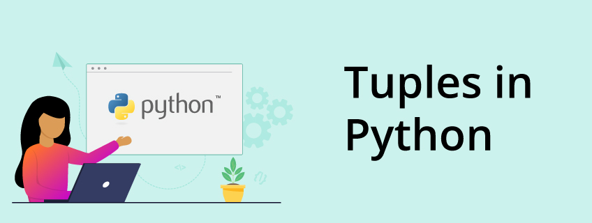 What Is a Tuple in Python?