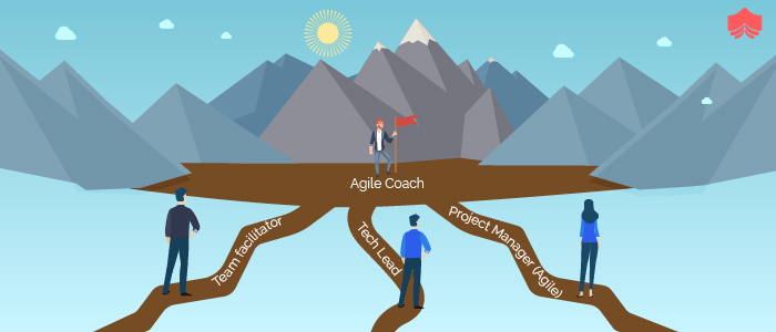 Progressing From Agile Practitioner To Agile Coach- A Perspective