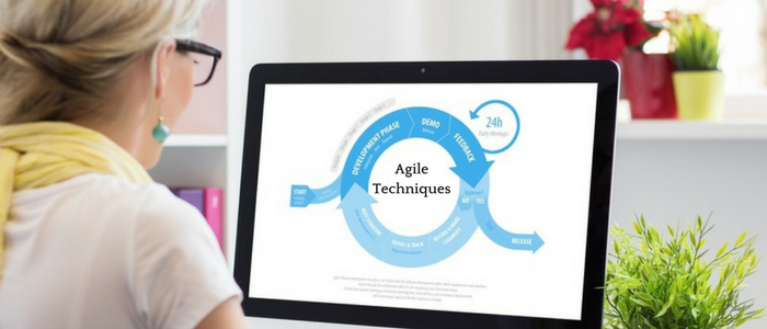 3 Agile management Techniques That Will Get The Most From Your Team