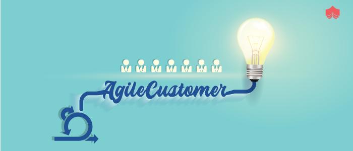 How to be an Agile Customer?