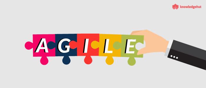 Agile Methodologies Comparison and Convergence
