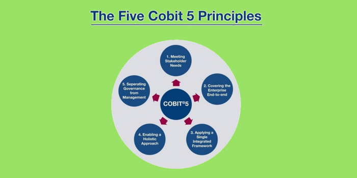 Top Principles of COBIT 5 Foundation – IT Security