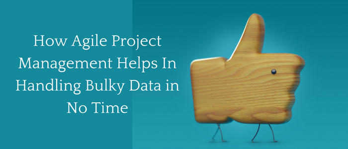 How Agile Project Management Helps In Handling Bulky Data In No Time