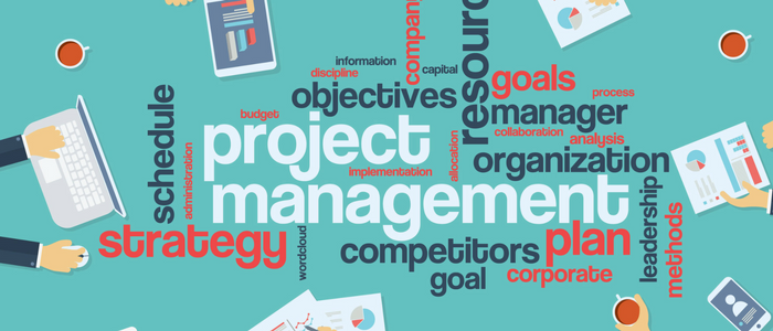 All You Need to Know About Project Management Professional