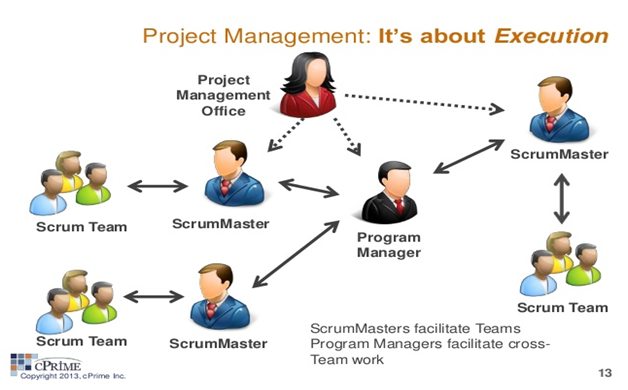 project management roles That is to say, projects by default are present in every program and as such, certain project management roles must be present within every program such roles include the project manager, customer, senior user, planning coordinator, etc.